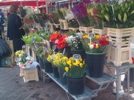 Cot flowers Nice Market